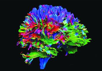 la psichiatria verso il futuro